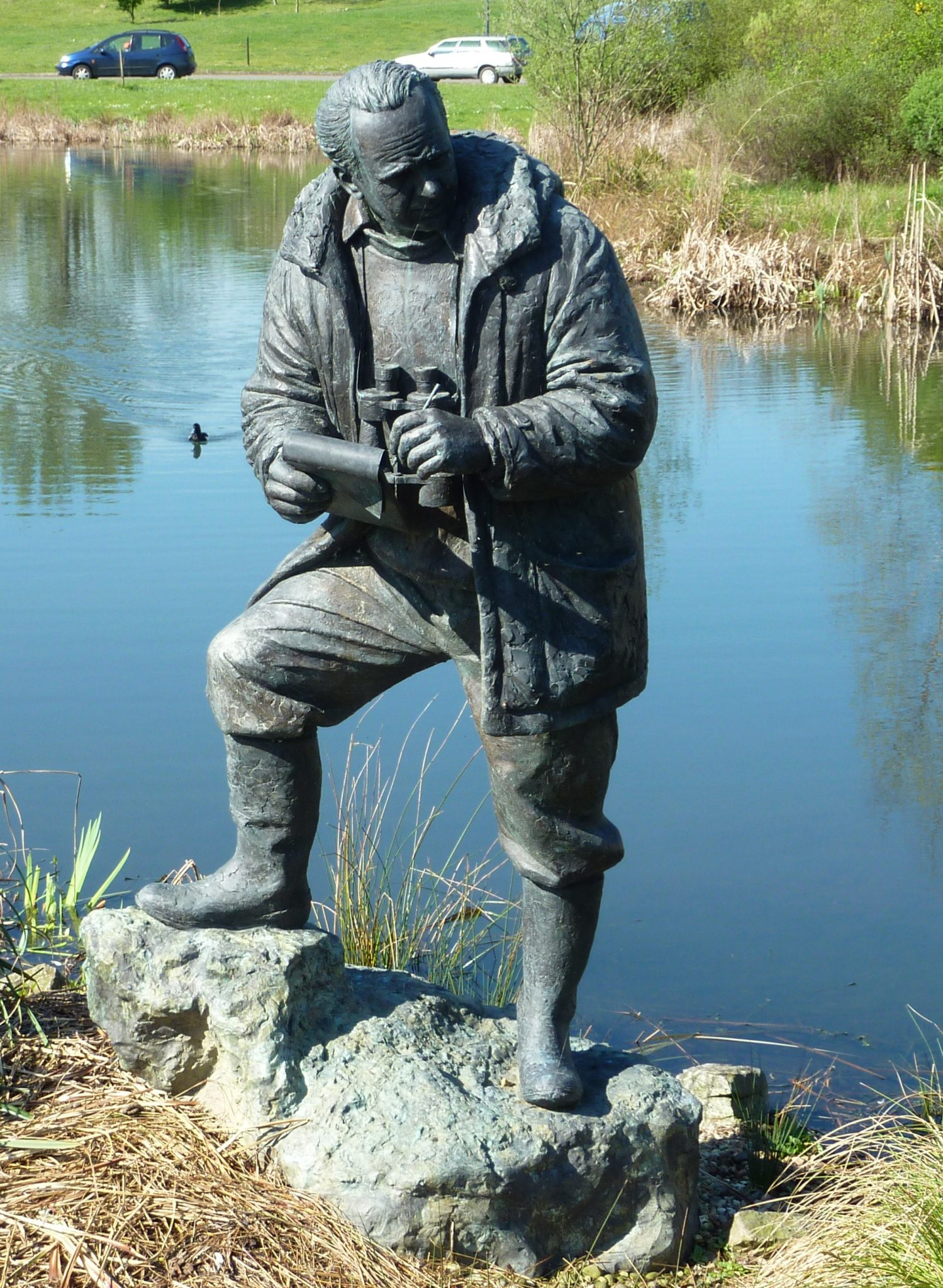 Bronze sculpture at Wildfowl and Wetlands Center Barnes London