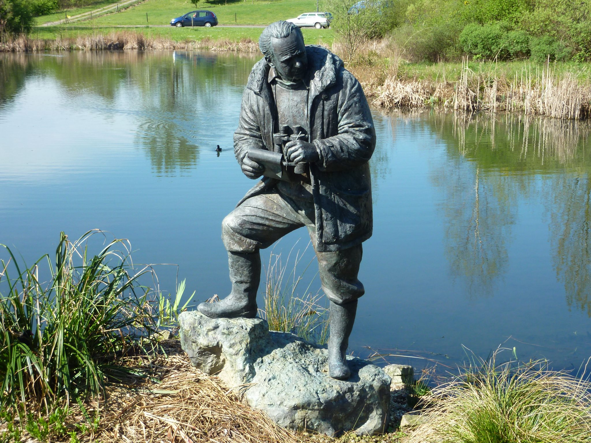 Bronze sculpture of Sir Peter Scott. WWT site at Barnes London