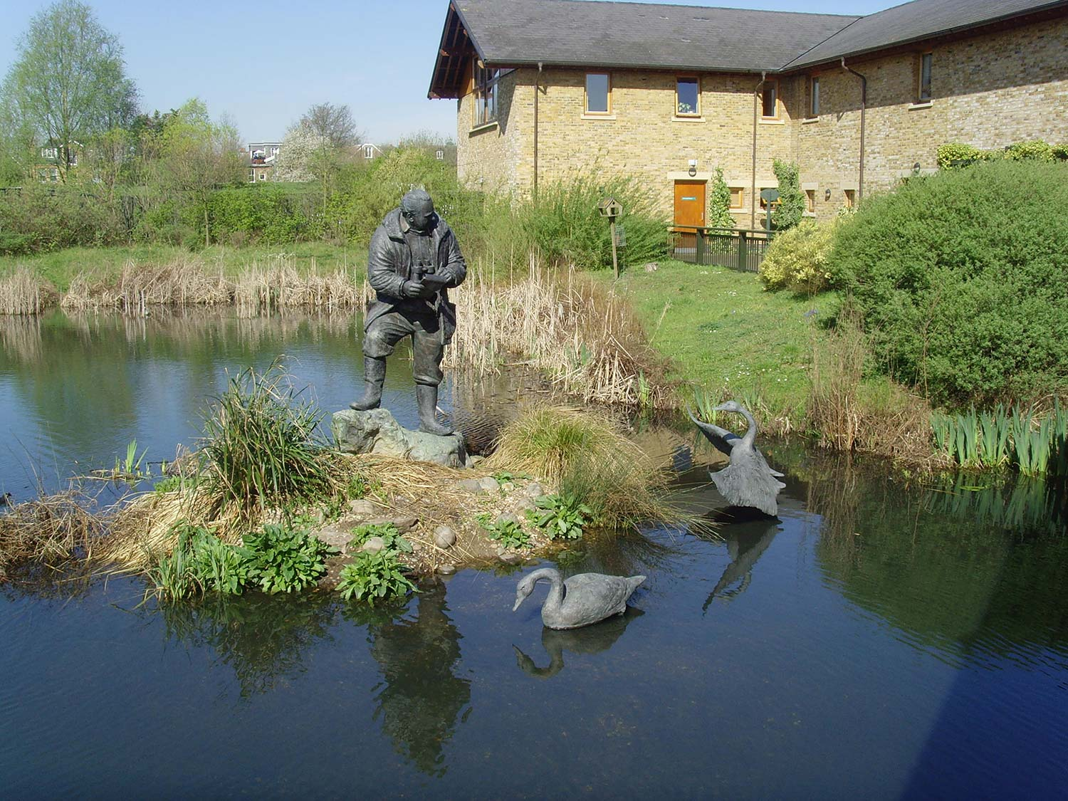 Sir Peter Scott bronze statue in Wetlands Centre Barnes, London.