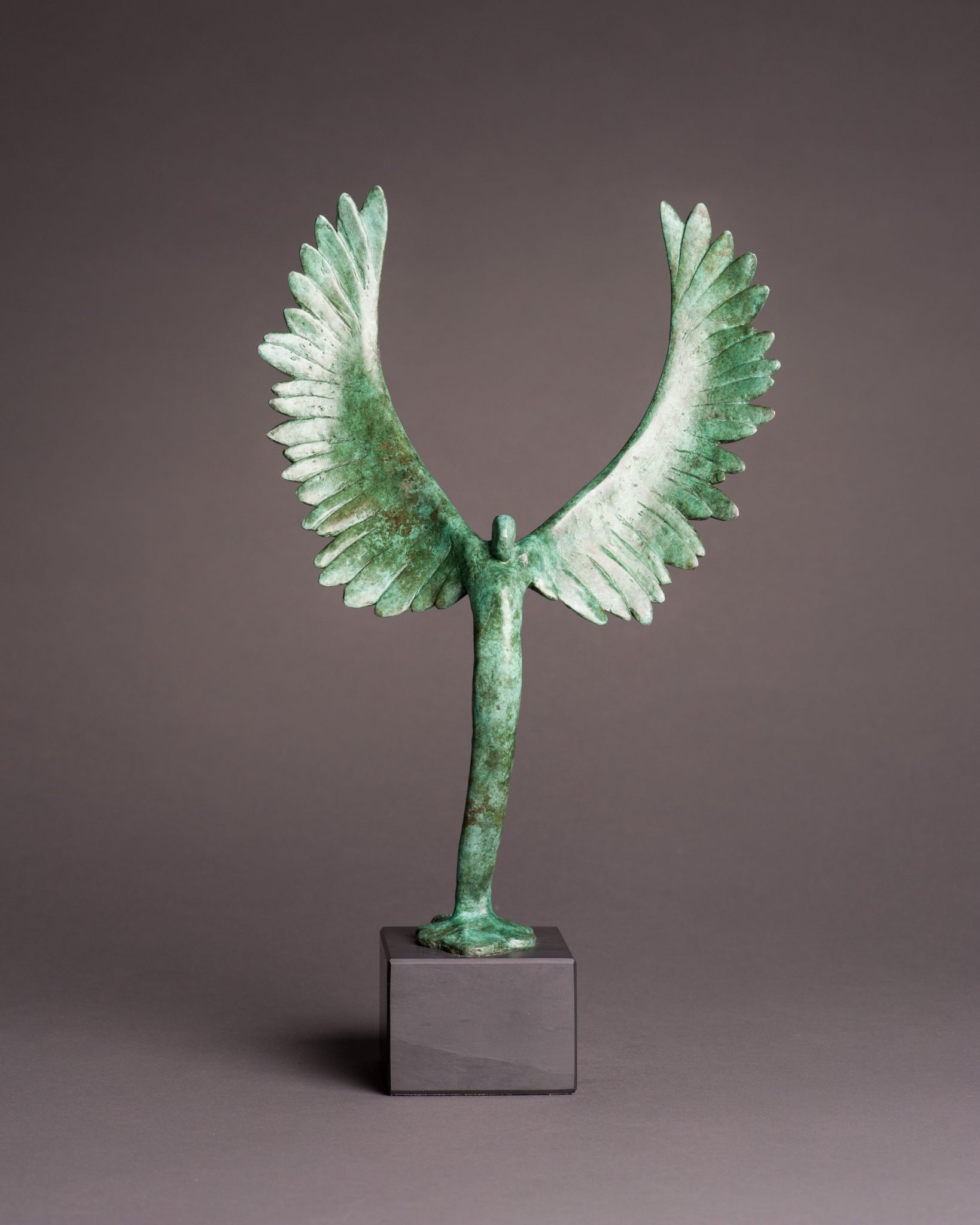 Green Swan trophy award for sustainability